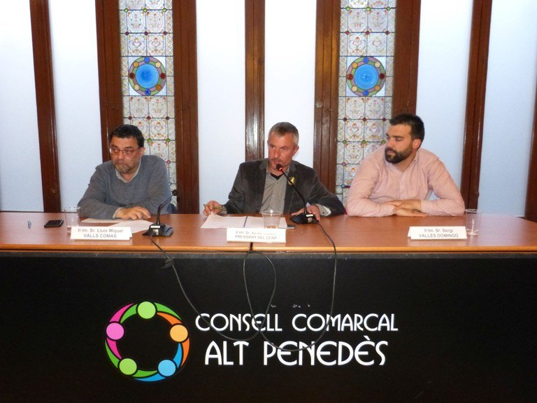 ConsellComarcalAltPenedes